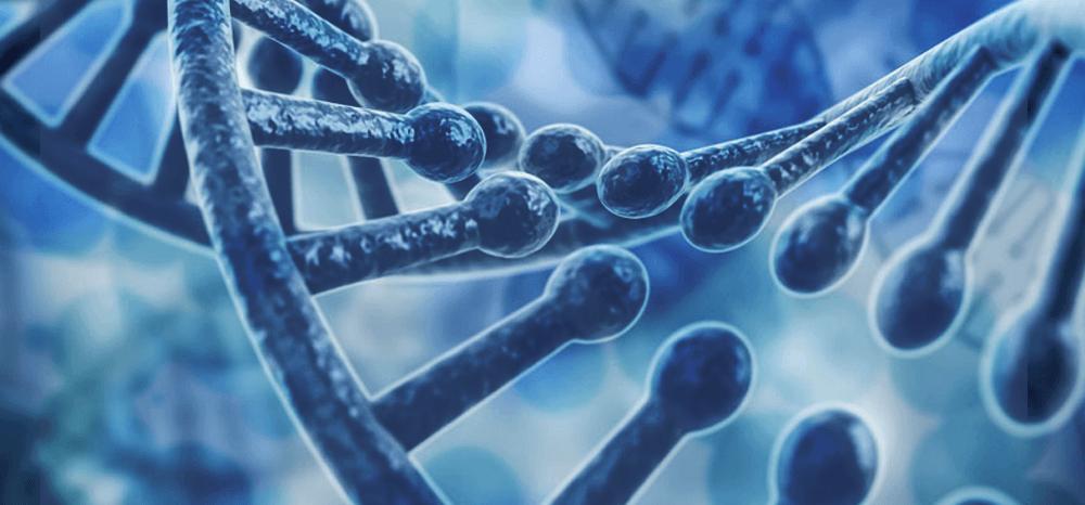 Nova tecnologia detecta agressividade do câncer de próstata de forma mais precisa